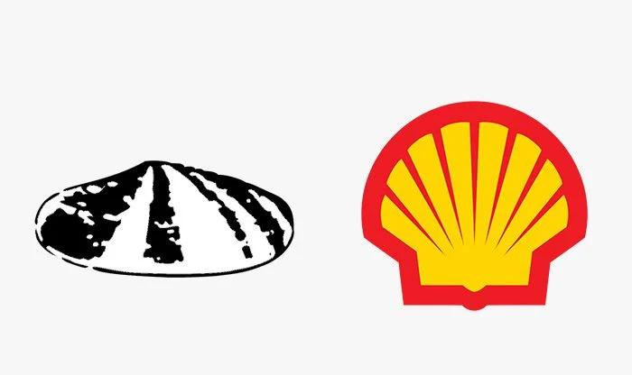 Logo shell prima e dopo